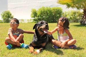 Irmãos - Crianças e Cachorro