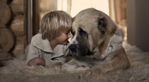 Amizade bebê e cachorro